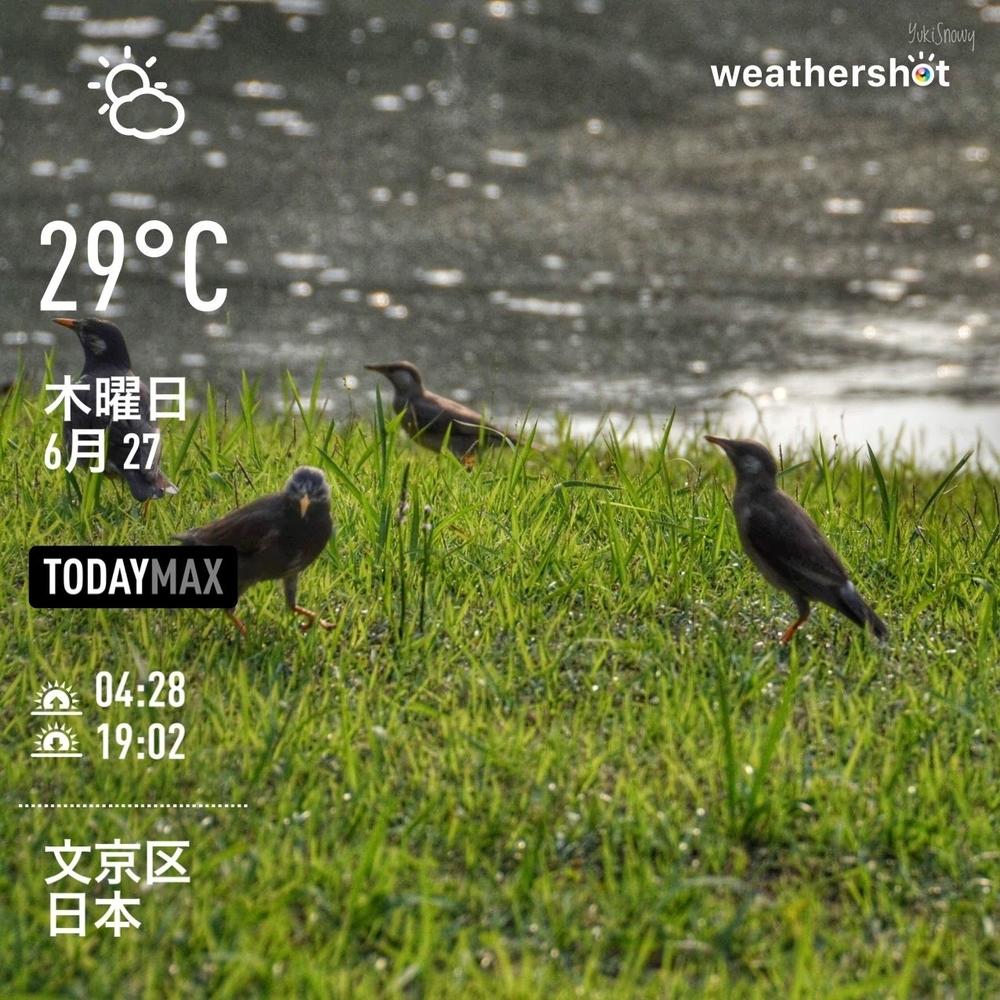 WeatherShot(2019-06-27)