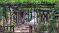 [東京][神社]愛宕神社(2019-06-28 13:40)