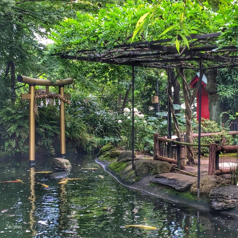 愛宕神社(2019-06-28 13:36)