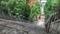 愛宕神社 出世の階段(2019-06-28 13:27)