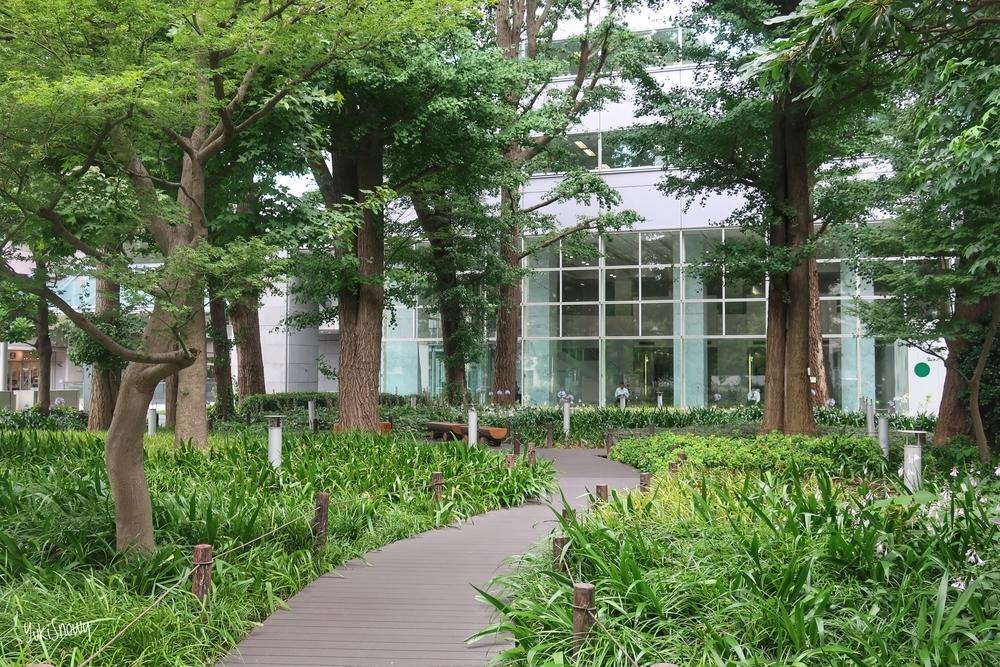 文京グリーンコート公園(2019-07-08 14:29)