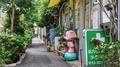 [東京][谷根千][路地]藍染大通り(2019-07-22 15:03)