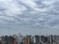 [空][雲][東京][朝](2019-07-28 09:06)