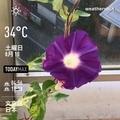 [Instaweather]WeatherShot(2019-08-10)