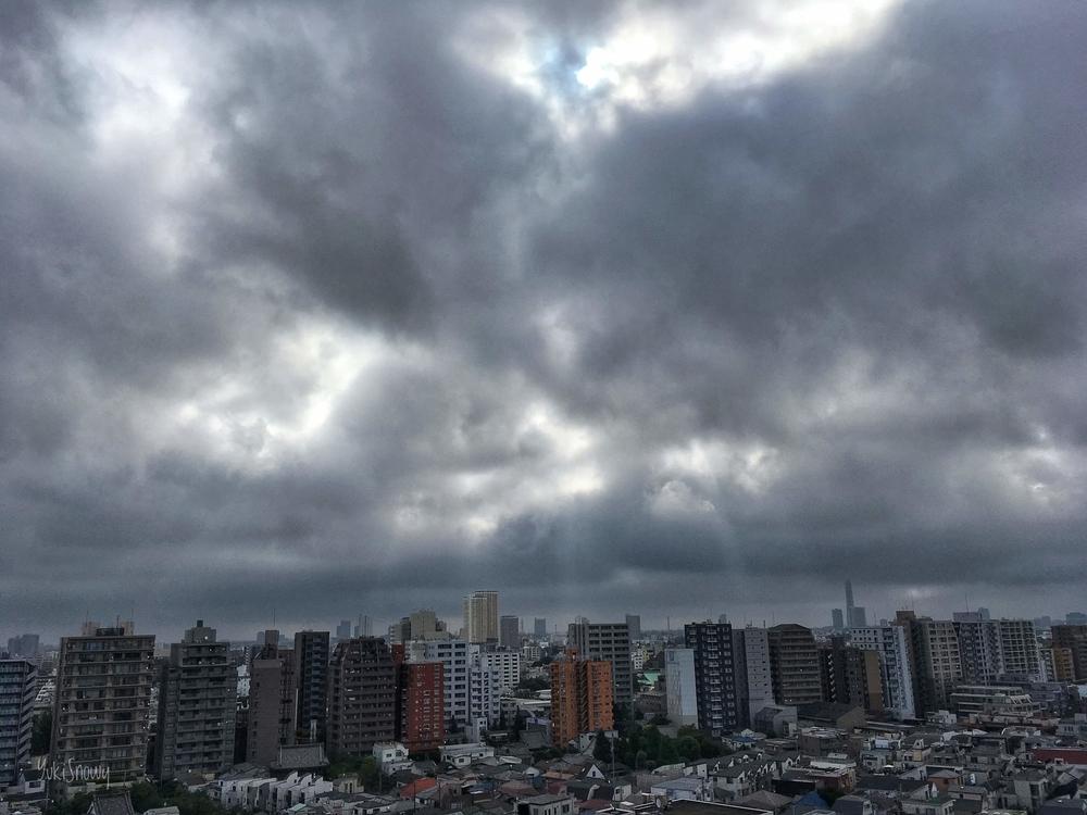 (2019-08-12 07:48)