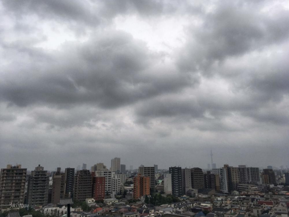 台風が行った朝(2019-08-16 05:57)