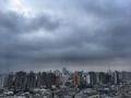 [空][雲][東京][朝](2019-08-19 06:03)