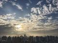 [空][雲][東京][朝](2019-08-21 05:56)