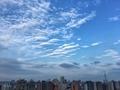 [空][雲][東京](2019-08-22 17:29)