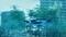 ケープペンギン@サンシャイン水族館(2019-08-27 14:32)