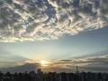 [空][雲][東京][朝](2019-09-18 05:53)