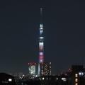 [東京][夜景]ラグビー日本代表をイメージした特別ライティング(2019-09-19)