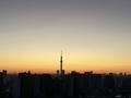 [空][雲][東京][朝](2019-11-12 06:01)