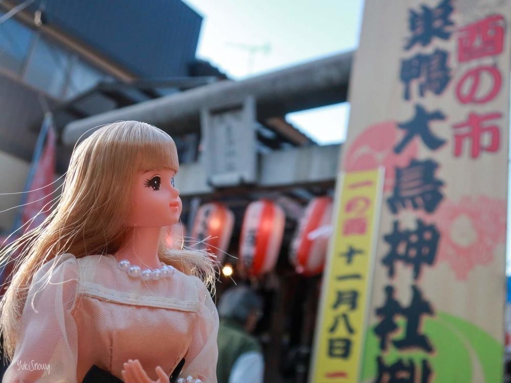 ジェニー@巣鴨大鳥神社(2019-11-20)