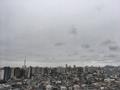 [空][雲][東京][朝](2019-11-26 08:19)