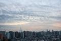 [空][雲][東京][朝](2019-12-11 06:47)