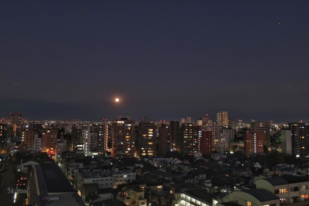 満月(2019-12-12 17:03)