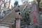 駒込富士神社(2020-01-01 14:24)