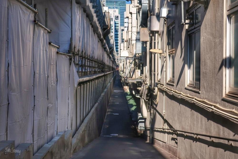 銀座コリドー通り(2020-01-03 13:52)