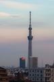 [東京][夕暮れ]東京スカイツリー+イーストタワー(2020-01-06 16:19)