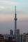 東京スカイツリー+イーストタワー(2020-01-06 16:19)