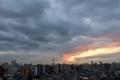 [空][雲][東京][朝](2010-01-11 06:59)