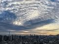[空][雲][東京][朝](2020-01-12 07:30)
