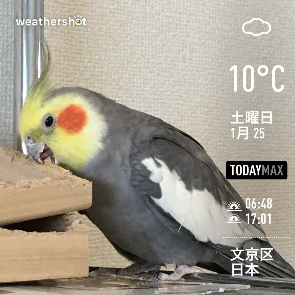 WeatherShot(2020-01-25)