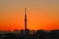 [空][雲][東京][朝][日の出](2020-01-30 06:45)