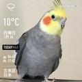 [Instaweather]WeatherShot(2020-01-26)