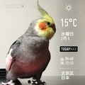 [Instaweather]WeatherShot(2020-02-05)