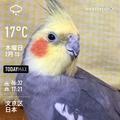[Instaweather]WeatherShot(2020-02-13)