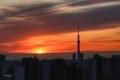 [日の出][空][雲][東京][朝](2020-02-20 06:29)