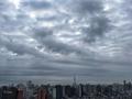 [空][雲][東京][朝](2020-02-29 07:16)