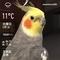 WeatherShot(2020-02-26)