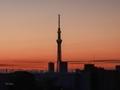 [東京][東京スカイツリー]朝焼けの中の誕生石(2020-03-12 05:39)