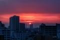 [日の出][空][雲][東京][朝](2020-03-16 05:55)