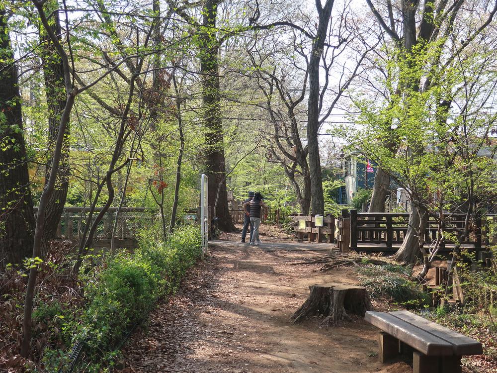 玉川上水緑道と東鷹の橋と兎橋(2019-04-06)