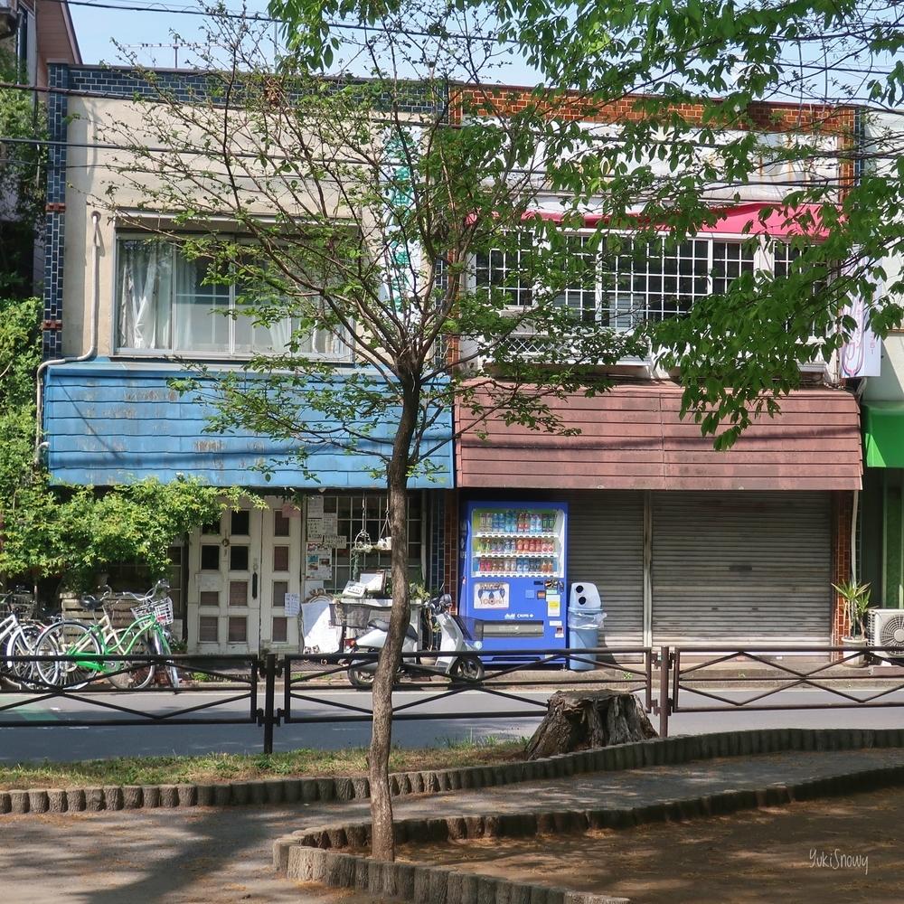 小平市(2019-04-21)