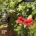 [Instaweather]WeatherShot(2020-04-07)