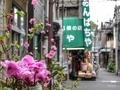 [東京][街角][谷根千]根津(2016-04-04 15:50)