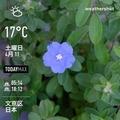 [Instaweather]WeatherShot(2020-04-11)