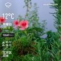 [Instaweather]WeatherShot(2020-04-13)