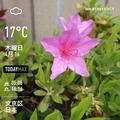 [Instaweather]WeatherShot(2020-04-16)