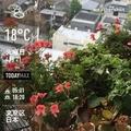 [Instaweather]WeatherShot(2020-04-21)
