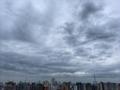 [空][雲][東京][朝](2020-05-04 08:20)