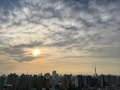 [空][雲][東京][朝](2020-05-05 05:47)