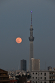 [月][夜景][スカイツリー]満月(2020-05-07 18:35)