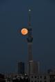 [月][夜景][スカイツリー]満月(2020-05-07 18:40)