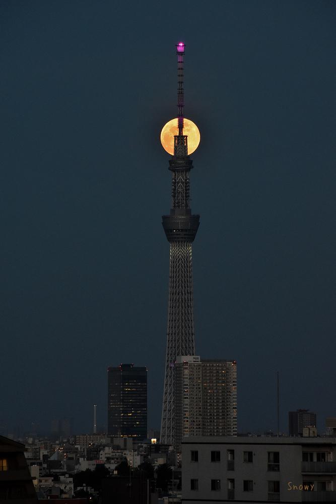 満月(2020-05-07 18:43)